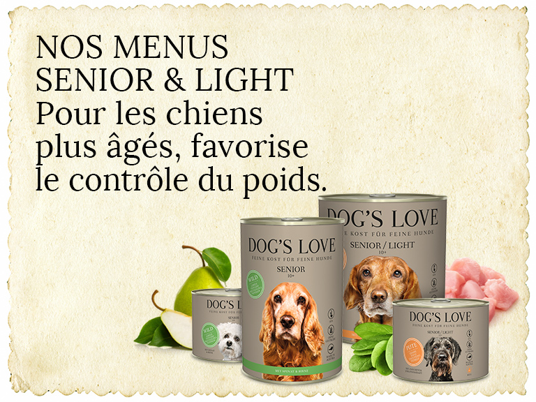 Senior Hundefutter Header
